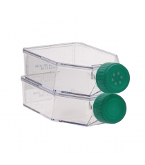 Cell Culture Flask, treated, Sterile