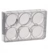 Plaque multipuits pour culture cellulaire, traitée, stérile